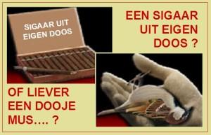 sigaar-uit-eigen-doos