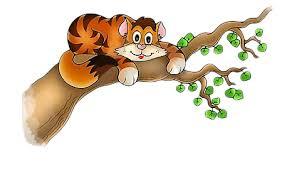 Kat uit de boomkijkers.
