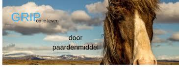 Nog een Paardenmiddel.